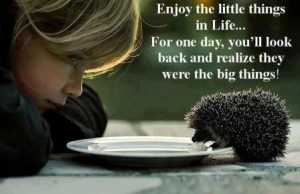 Enjoy-the-little-things-in-Life